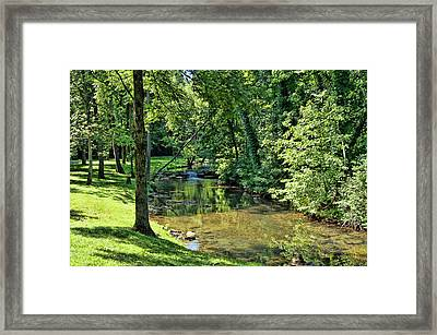 Framed Print featuring the photograph Summer Stream by Cricket Hackmann