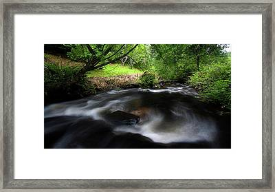 Framed Print featuring the photograph Summer Stream by Tim Nichols