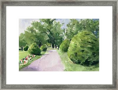 Summer Stroll Boston Public Garden Framed Print