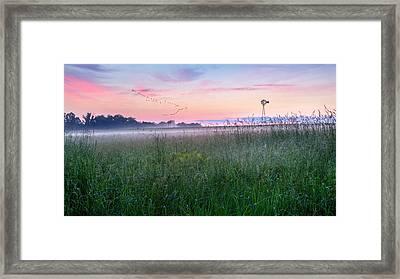 Summer Sunrise 2015 Framed Print by Bill Wakeley