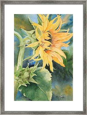 Summer Sunflower Framed Print