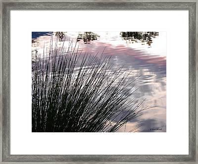 Summer Sunset Framed Print by Karl Reid