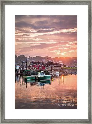 Summer Sunset Over Cook's Lobster Framed Print by Benjamin Williamson