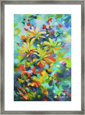 Summer Sweetness Framed Print