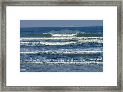 Summer Swell Framed Print by Donna Cain