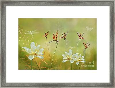 Framed Print featuring the photograph Summer Symphony by Bonnie Barry