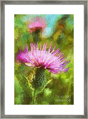 Summer Thistle - Digital Paint Framed Print by Debbie Portwood