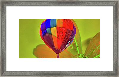 Summer Thoughts Framed Print