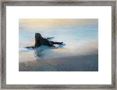 Summer Tide Framed Print