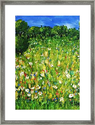 The Glade Framed Print