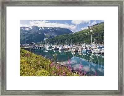 Summer View Of Whittier Boat Harbor Framed Print