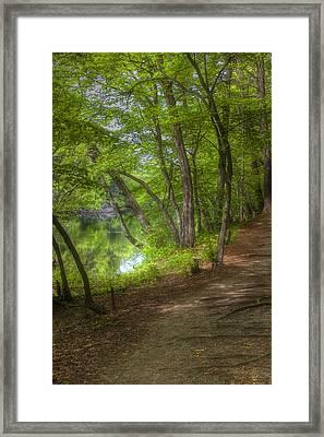 Summer Walk Framed Print by Joann Vitali