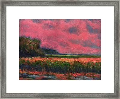 Summer Wetlands - Distant Haze  Framed Print