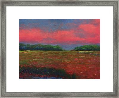 Summer Wetlands - Outlet Framed Print by Vernon Reinike