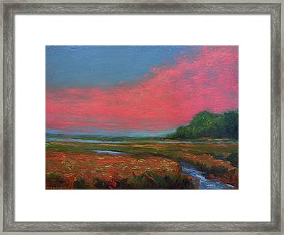 Summer Wetlands - To The Gulf Framed Print