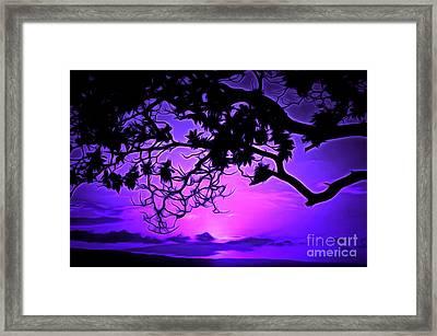 Summer Whisper Framed Print by Krissy Katsimbras
