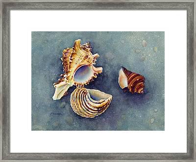 Summer Whispers Framed Print by Hailey E Herrera