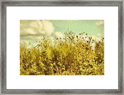Summer Wildflower Impression Framed Print