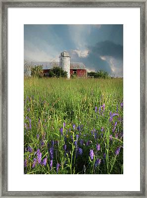 Summer Wildflowers Framed Print by Lori Deiter
