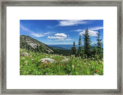 Summer Wildflowers On Big White Framed Print