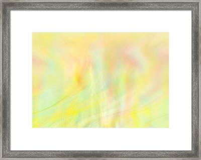 Summer Wind Framed Print by Eileen Shahbazian