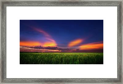 Summer Wind Framed Print by Mark Andrew Thomas