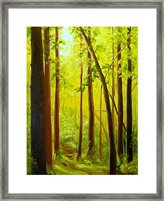 Summer Woods Framed Print