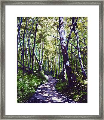 Summer Woods Framed Print by Jerry Kirk