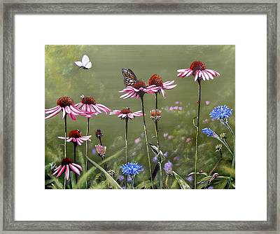 Summerlands Framed Print