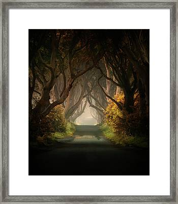 Summer's Almost Gone Framed Print
