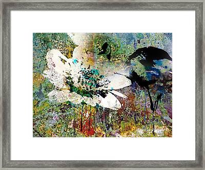 Summers Garden Framed Print by Angela Holmes