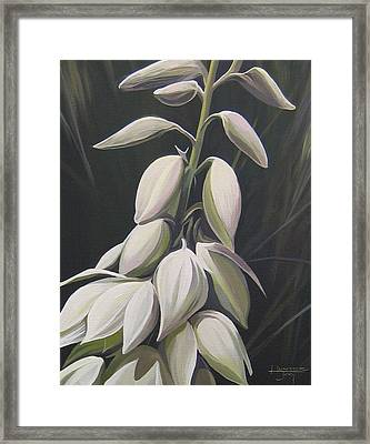 Summersilver Framed Print by Hunter Jay