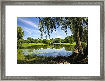 Summertime At Otsiningo Park Framed Print by Christina Rollo