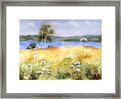 Summertime Birches Framed Print