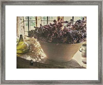 Comfort  Framed Print by Connie Handscomb