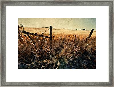 Summertime Country Fence Framed Print