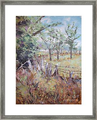 Summertime Framed Print by Cynthia Parsons