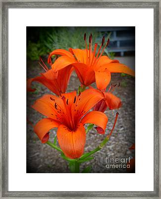 Summertime Lovers Framed Print