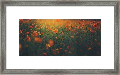 Framed Print featuring the photograph Summertime by Shane Holsclaw