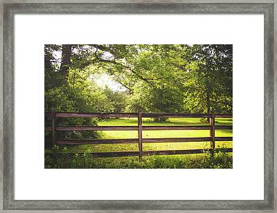 Framed Print featuring the photograph Summertime Sunshine by Shelby Young