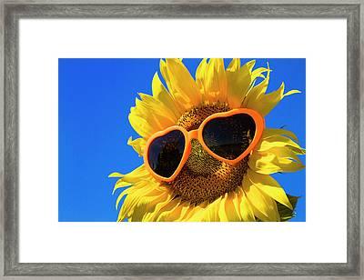 Summertime Framed Print by Teri Virbickis