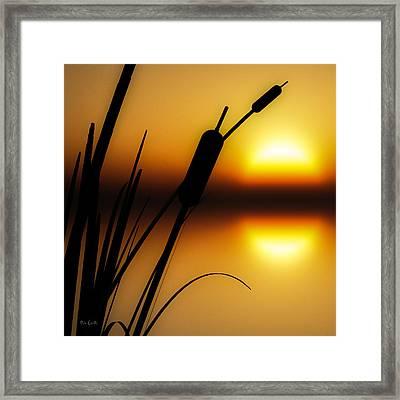 Summertime Whispers  Framed Print by Bob Orsillo