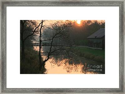Sun Above The Trees Framed Print