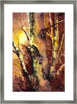 Sun And Aspen 1 Framed Print