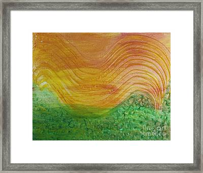 Sun And Grass In Harmony Framed Print