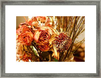 Sun And Rose Framed Print by Kendall Tabor