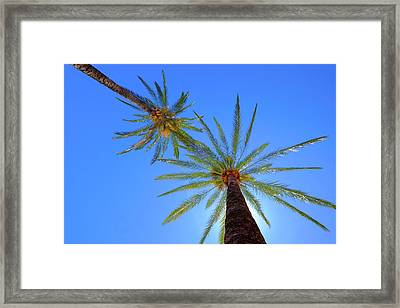 Sun Bed View Framed Print