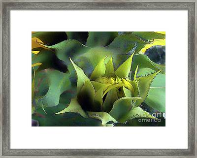 Sun Birthing Framed Print