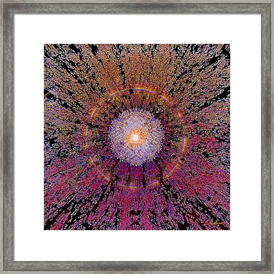 Sun Burst Framed Print by Michael Durst