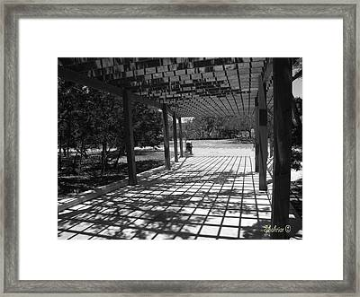 Sun Checkerboard  Framed Print
